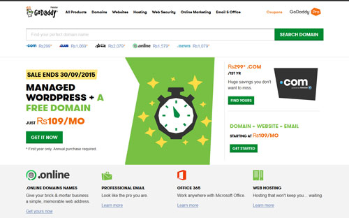 GoDaddy Excellent Domain Registrar